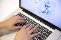 Badania online