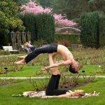 pokazy akrobatyczne